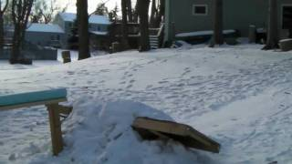 getlinkyoutube.com-Backyards and Tripods