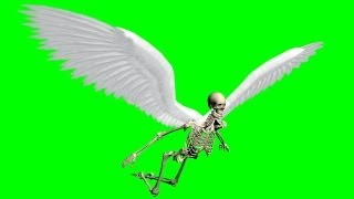 getlinkyoutube.com-flying skeleton with moving wings - green screen effect