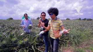 getlinkyoutube.com-Foodwork สับปะรด : พล่ากุ้ง มาเจนต้า : 24 พ.ย. 56 (HD)