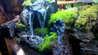 getlinkyoutube.com-CHECK OUT MY WATERFALL I BUILT FOR MY 55 GAL. TANK