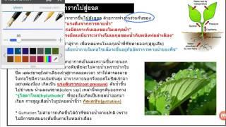VDO ชีววิทยา 18 การลำเลียงสารในพืช ชุดที่ 01