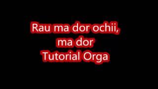 getlinkyoutube.com-Canta La Orga - Rau ma dor ochii, ma dor Tutorial orga #23