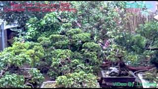 getlinkyoutube.com-Ngọc Sơn Đặc Biệt-1993-Test Loa-{Equalizer-By:Lê Hùng-Bắc Giang}-CD2..||