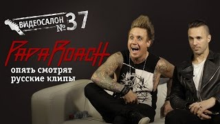 Papa Roach смотрят русские клипы (Видеосалон №37)