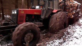 getlinkyoutube.com-Belarus Mtz 1025 in wet forest, difficult conditions 2