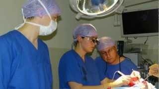 Impressionen Herzchirurgie
