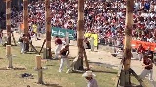 Competição de corte de árvore NO MACHADO