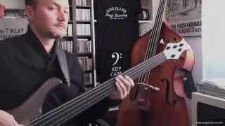 Alegria - Cirque Du Soleil - Bass Cover (Intro with fretless)