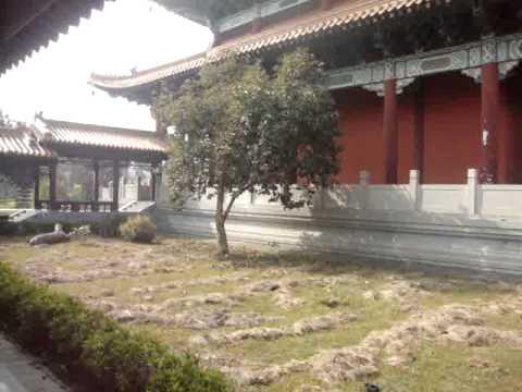 01 00 Prof  Juan Lázara recorre monasterio chino en Lumbini, Nepal, lugar de nacimiento de Buddha