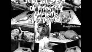 Disgorgement Of Intestinal Lymphatic Suppuration - Freezing Moon (The True Mayhem cover)