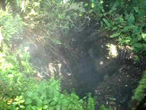 fumaiola vulcano mombacho