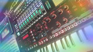 Poly Dolphin - Loop Music-13 (Making Movie) [Roland AIRA & JD-X]