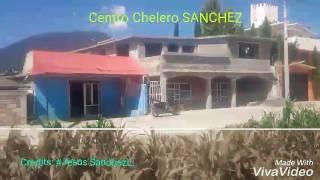 MAVORO Centro Chelero SANCHEZ..