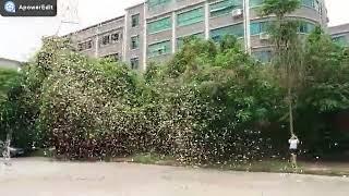 CO2 confetti machine (WeChat/WhatsApp: +86 18814148346)