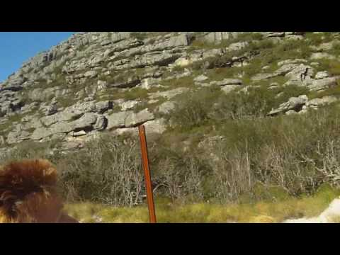 Josh/EJ – Table Mountain in Cape Town, South Africa Hike #18