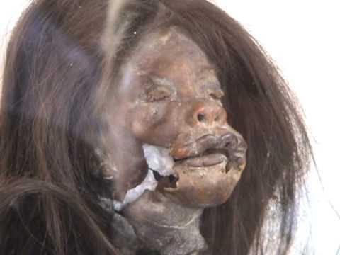 How head hunters schrink human heads / Hoe koppensnellers hoofden verkleinen