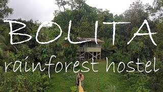 Bolita Rainforest Hostel - Costa Rica