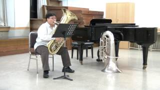 tuba excerpts Pictures at an Exhibition - IV Bydlo.avi