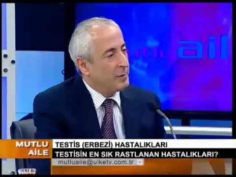 Testis (yumurta) hastalıkları - Prof.Dr.M.İhsan Karaman -- MUTLU AİLE  01.05.2011