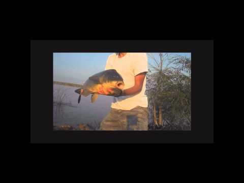 Carp Fishing South Africa – Center Mountain Lake
