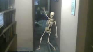 El esqueleto bailarín 😁😁😁