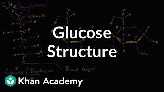 Molecular structure of glucose   Macromolecules   Biology   Khan Academy