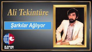 ALİ TEKİNTÜRE feat ADNAN TAYFUN  - AĞLATTI KADER