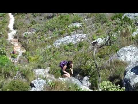 CIEE Stellenbosch Hoerikwaggo Trail October 2010.wmv