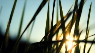 Feint - Your Own Way (feat. Stan SB)