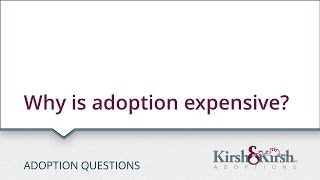 Adoption Questions: Why is adoption expensive?