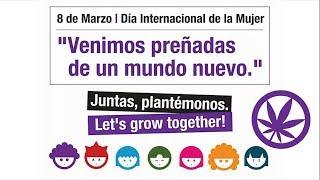 Every DAY is March 8th. Cada DIA es 8M - CANNÁBICAS, FEMINISTAS y ANTIPROHIBICIONISTAS