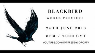 Fat Freddy's Drop Blackbird Album Release Show Live Stream