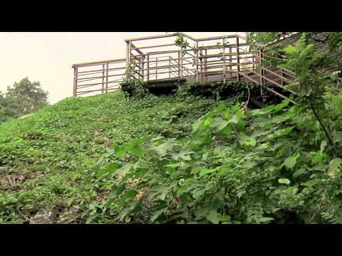 臺北市立圖書館北投分館(中文簡介影片) - YouTube