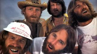 "The Beach Boys ""Matchpoint of our love"" feat. The Avalanches (After the Goldrush, 2008)"