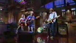 Sonic Youth-Bull in the heather (live on letterman)