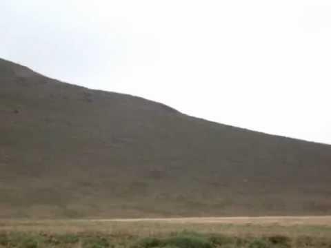 Andean condor in Antisana Ecological Reserve, www.mindobirdingtour.com