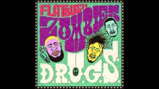Flatbush Zombies - S.C.O.S.A. (Prod. By Erick Arc Elliott)