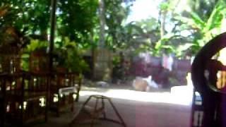oishi commercial 2010
