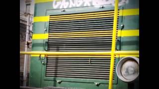 Gang graffiti catania