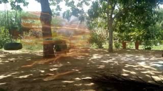 Primeiro vídeo teste de efeito flash