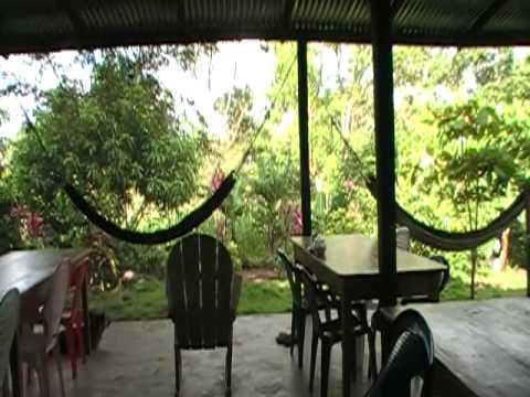 Monkey Island Hostel