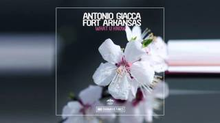 Antonio Giacca & Fort Arkansas - What U Know (OUT NOW)
