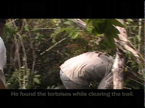 Galapagos Islands – Restless Isabela – Environmental Education