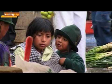Ecuador.com