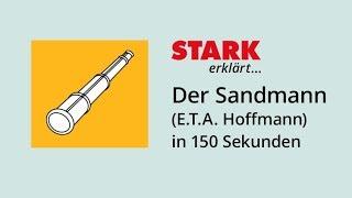 """Der Sandmann"" (E.T.A. Hoffmann) in 150 Sekunden"