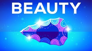 Why Beautiful Things Make us Happy – Beauty Explained width=