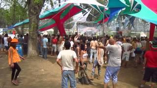 Tip festival 2014 - THE GREEN NUN OF THE REVOLUTION Dick trevor