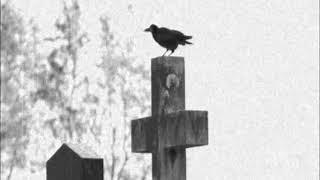 Sopor Aeternus - Freitod-Phantasien (instrumental)