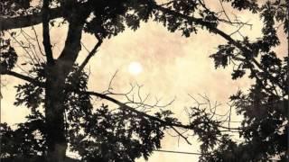 """Adriano Correia de Oliveira - """"O Sol p'rguntou à Lua"""" do disco """"Cantaremos"""" (LP 1970)"""