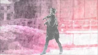 Senbonzakura - cover by Lindsey Stirling 20% faster